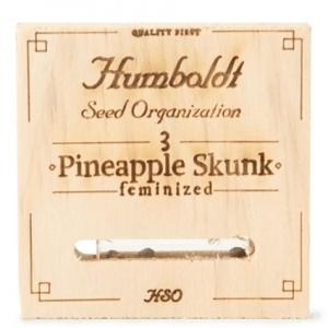 pineapple_skunk