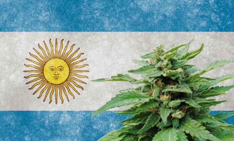 argentina legalizacia marihuany