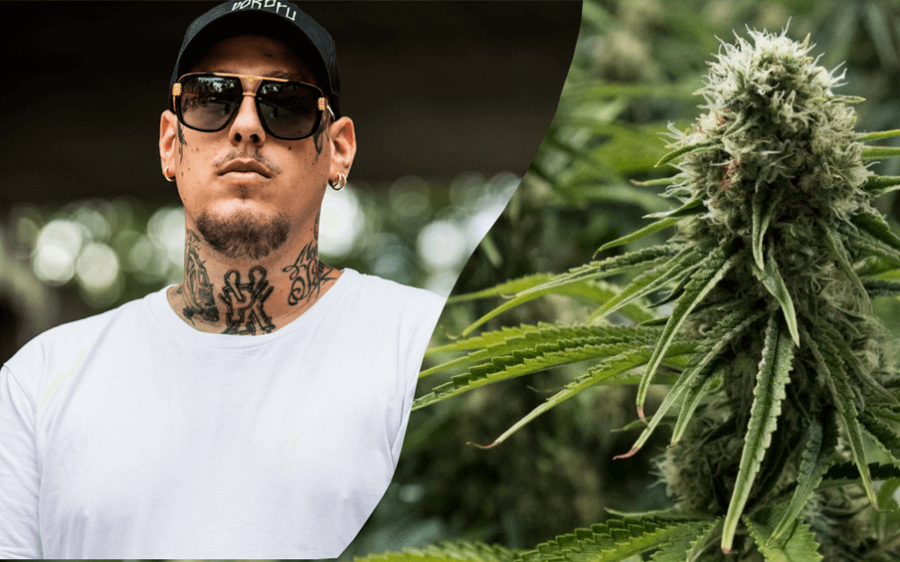 separ a marihuana